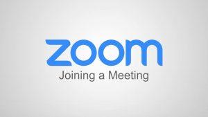 Zoom Meeting Foto für Astrologische Beratung von Evelyn Vysher oder Evelyn Fischereder be LYN-ASTRO